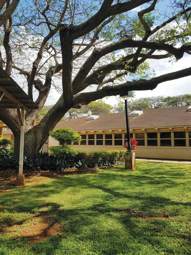 KAUNOA school