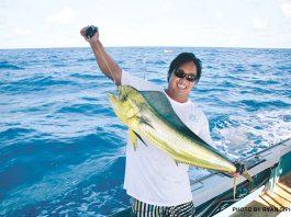 mahimahi fish