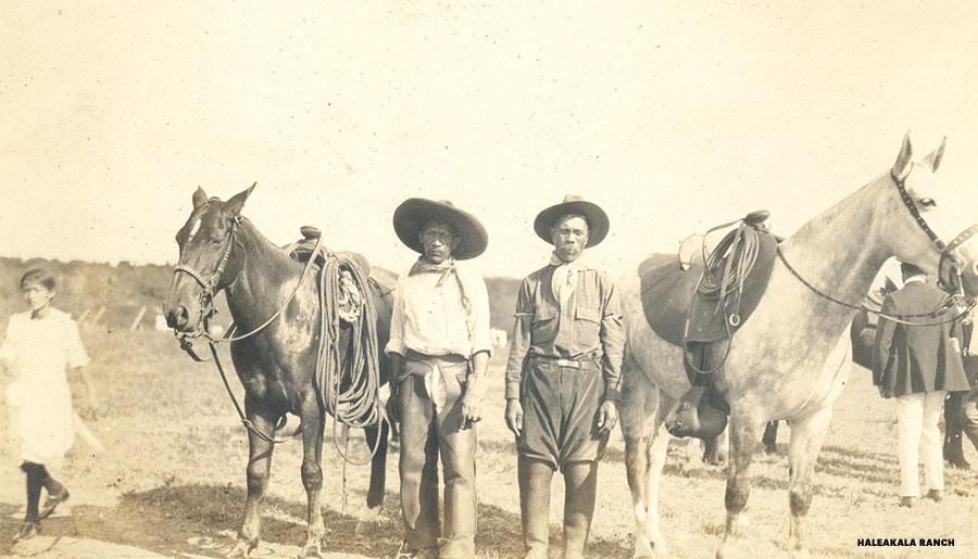 Haleakala ranch cowboys