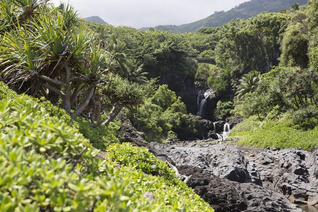Hana Maui day trip