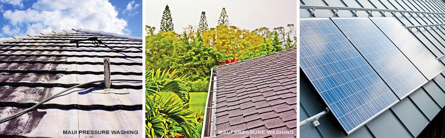 Hawaii home maintenance