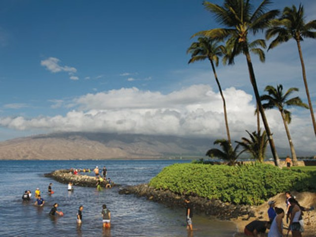 Kihei fishponds