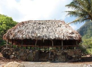 Hawaiian hale