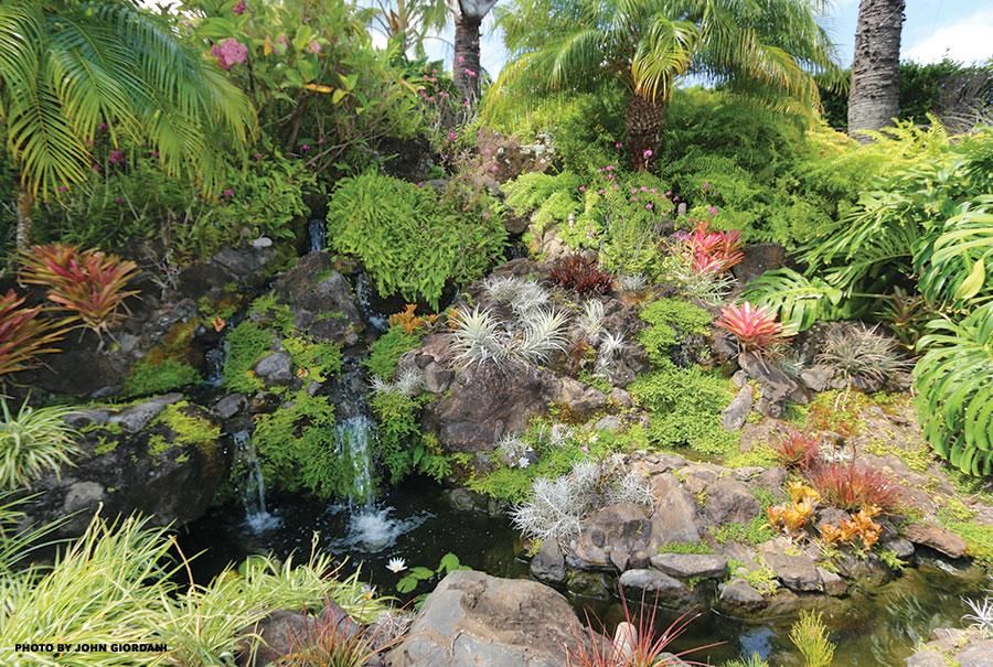 maui waterfall landscaping