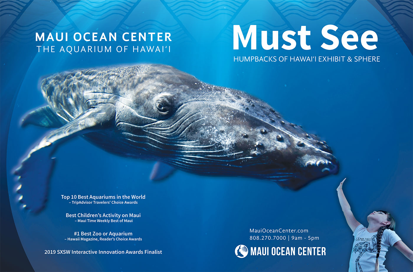 maui ocean center humpbacks