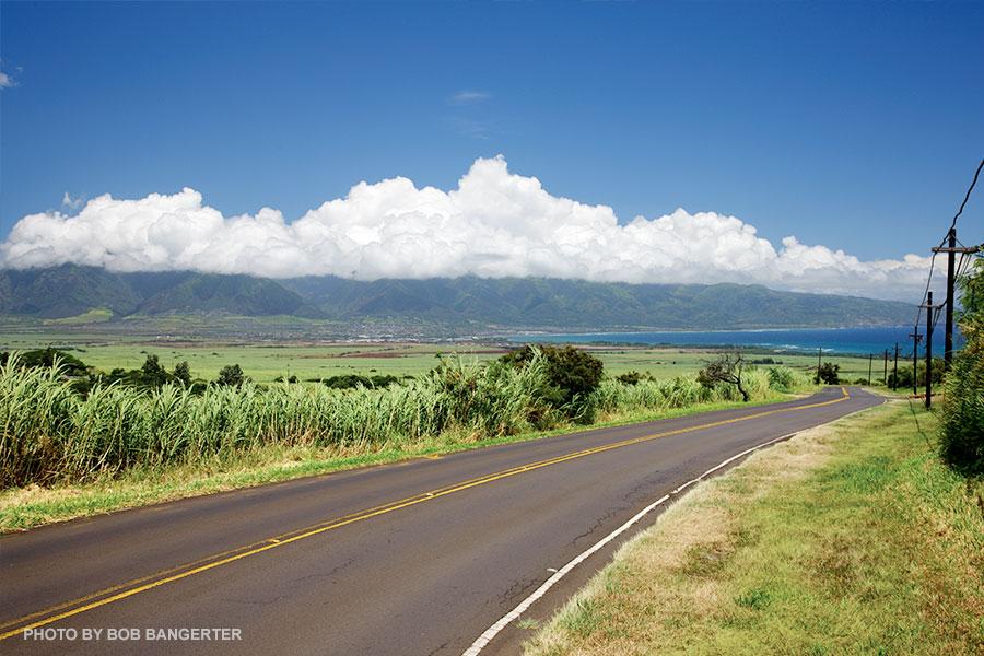 Makawao Maui Road Trip