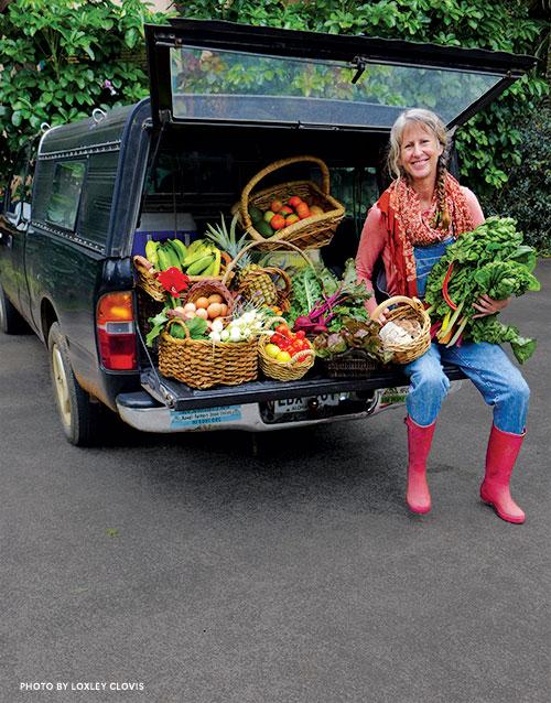 Vicki Levin, food abundance circle