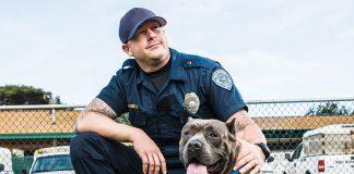 Maui Humane Society Animal Emergency Services