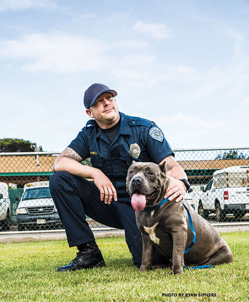 Maui Humane Society Animal Emergency Services