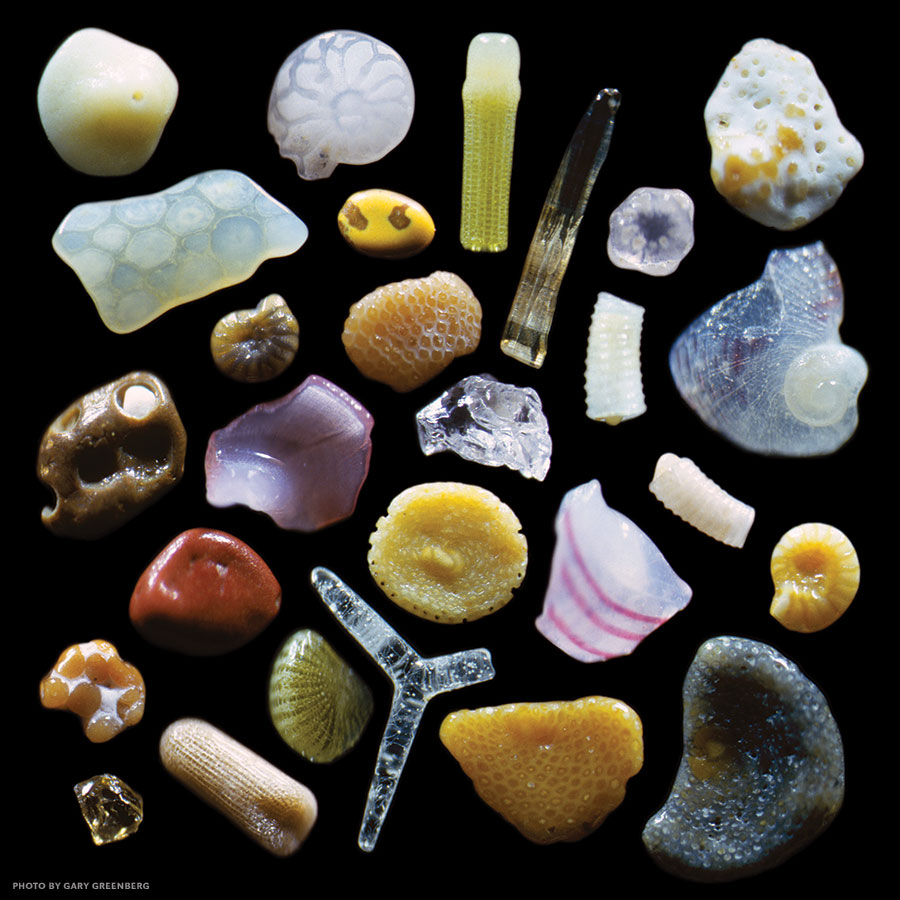 sand up close magnified