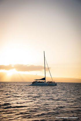 Maui Teralani