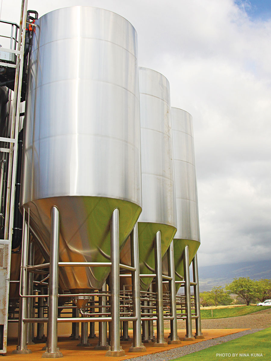 maui beer production