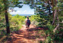 Maunalei Arboretum trail hike
