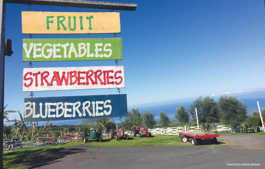 Maui kula country farms