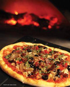 Pi-Artisan-Pizza-Oven