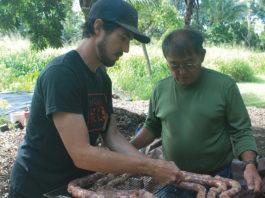 Portugese Sausage