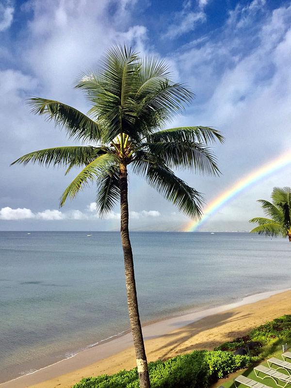 Maui Rainbow over ocean.