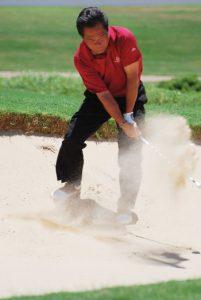 maui's golf courses