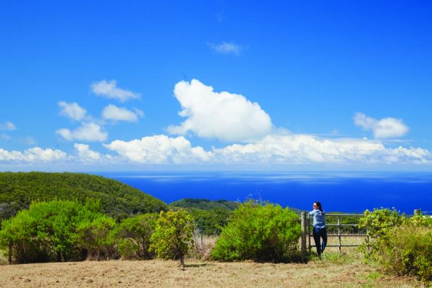 Maui Ranch Vacation