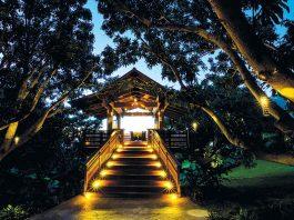 Hotel Wailea Treehouse