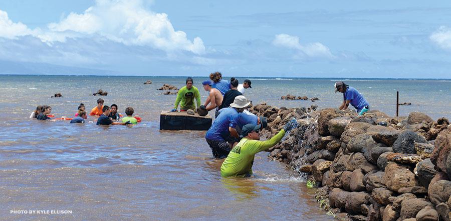 Waiaopae Fishpond Molokai