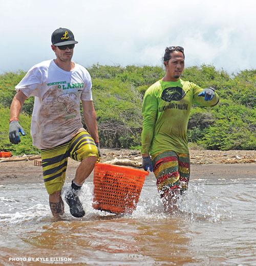 Waiapoe Restoration Molokai