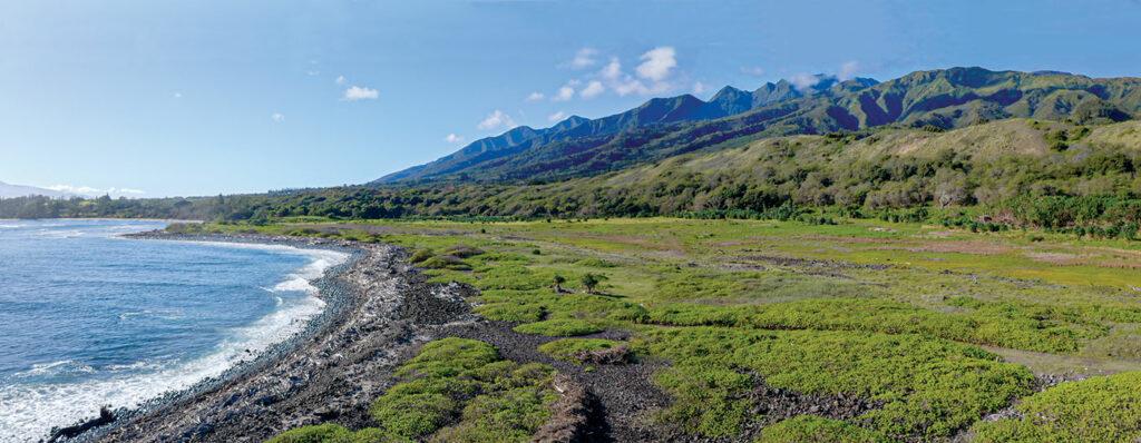 Waihee Wetland Refuge