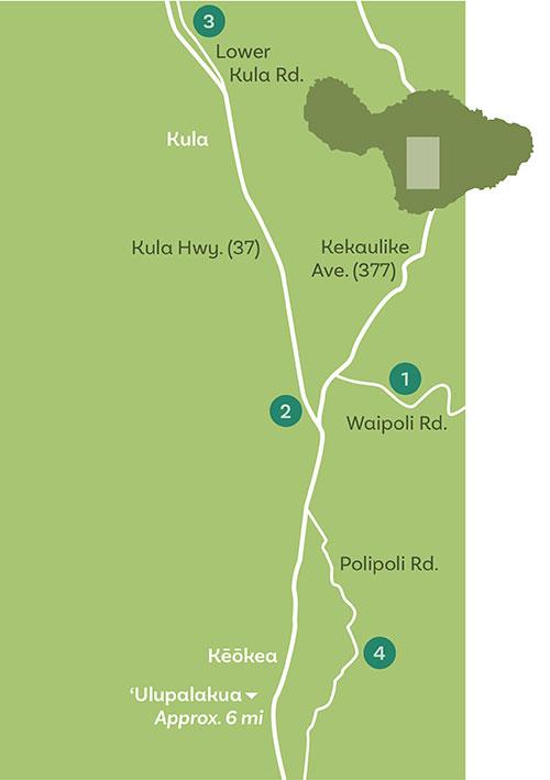 upcountry maui map