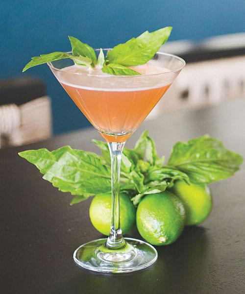 basic cocktail recipe