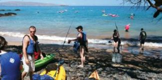maui beach business