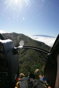bog-eye-view