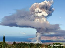 Maui cane burning controversy