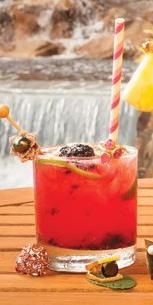 dragonberry bomb cocktail recipe