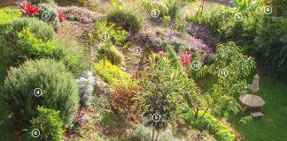 edible gardens maui