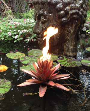 lotus fire tiki for water
