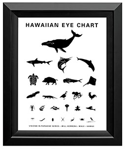Hawaiian eye chart
