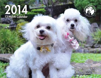 Maui Human Society calendar