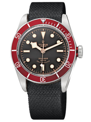 tudor watch gift