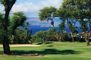 old blue wailea golf