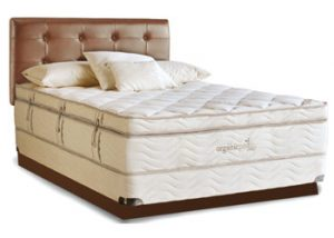 great-finds-living-organic-bed(1)