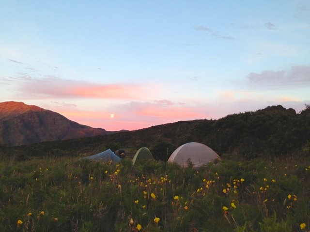maui camping haleakala