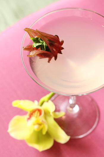 hana haze cocktail