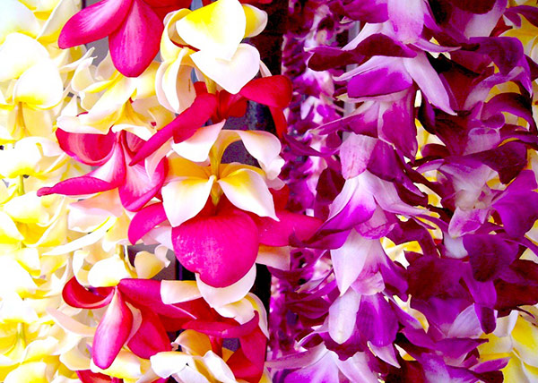 make a lei in maui