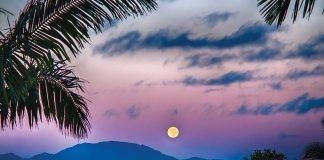 hawaiian moon calendar