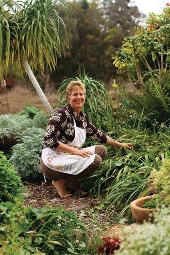 native hawaiian garden