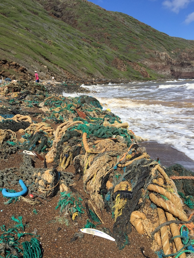 This is what the Kanapou Bay coastline looked like when we arrived on the island. Man, litter (i.e. marine debris) bugs me.