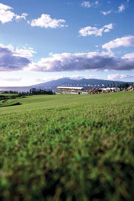 Kapalua golf hold 18