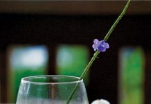 kiawe cocktail