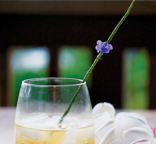 kiawe cocktail