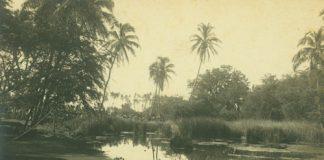Lahaina island